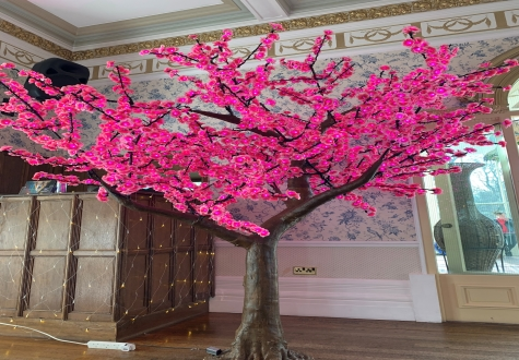 Pink LED feature tree for weddings and special events North East
