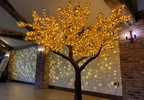 LED Tree hire North East and surrounding areas