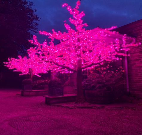 Giant LED tree hire Darlington